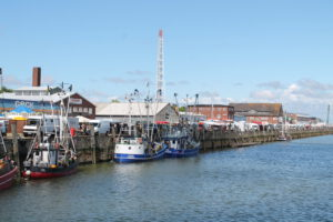 Der Fischmarkt in Cuxhaven